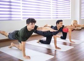 Trainer exercises bird dobg